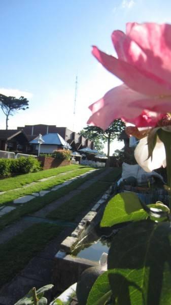 Delfin Azul Hotel and Resort