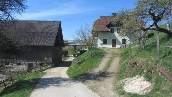Hotel Familie Steinwender