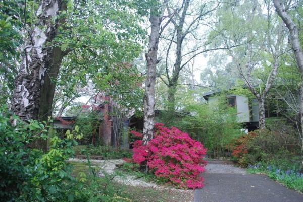 Hotel Rocky Creek Art Garden B&B