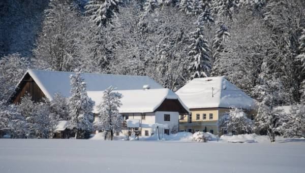 Hotel Bauernhof Holzinger im Almegg