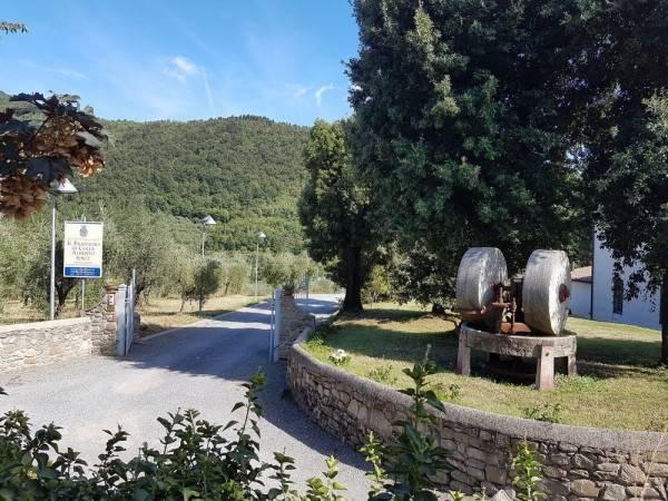 Hotel Agriturismo Il Frantoio di Colle Alberto