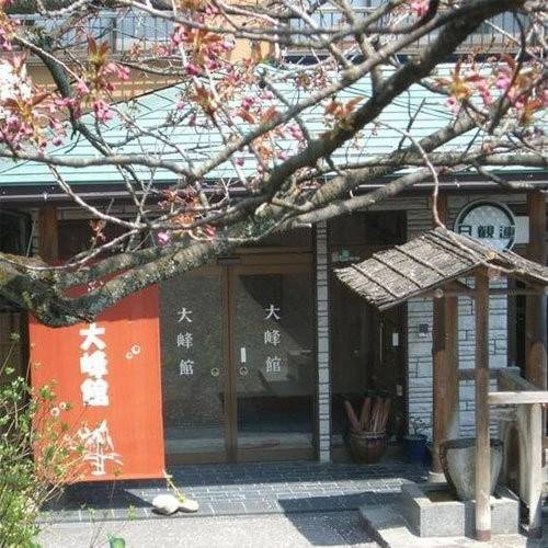 Hotel (RYOKAN) Kamimoku Onsen Tsuki ga Hohoemu Yado Ominekan