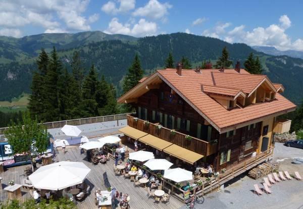 Hotel Rinderberg Swiss Alpine Lodge