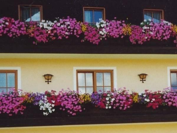 Hotel Pichler (4 Edelweiß)
